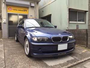 alpina008